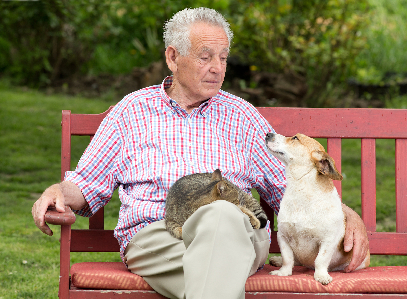 Senior-Man-With-Pets